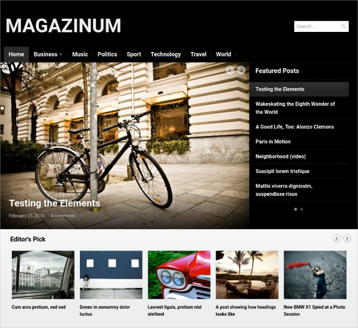 magazine style website theme