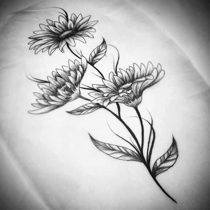 daisies flower drawing - Drawing Design Ideas