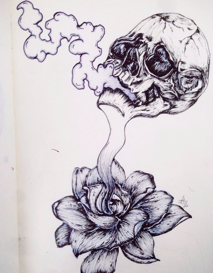 Skull with Flower Drawing