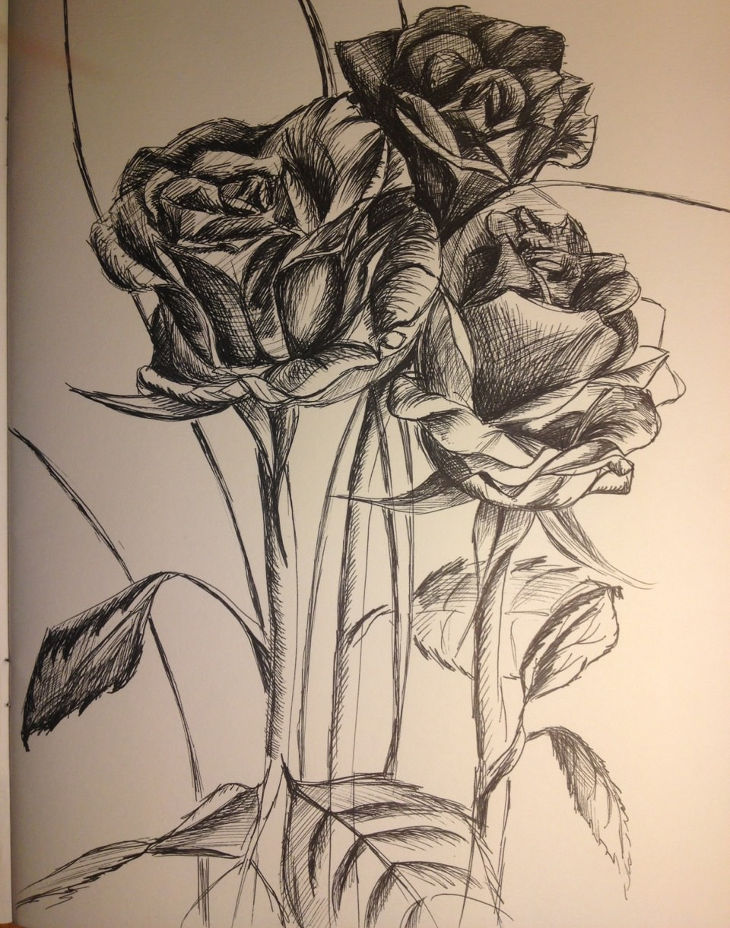 beautiful rose bouquet drawing
