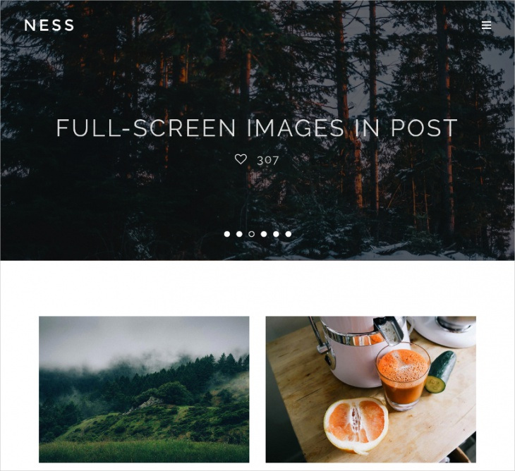 minimalist photo magazine theme