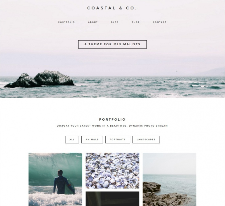 modern minimalist wordpress theme1