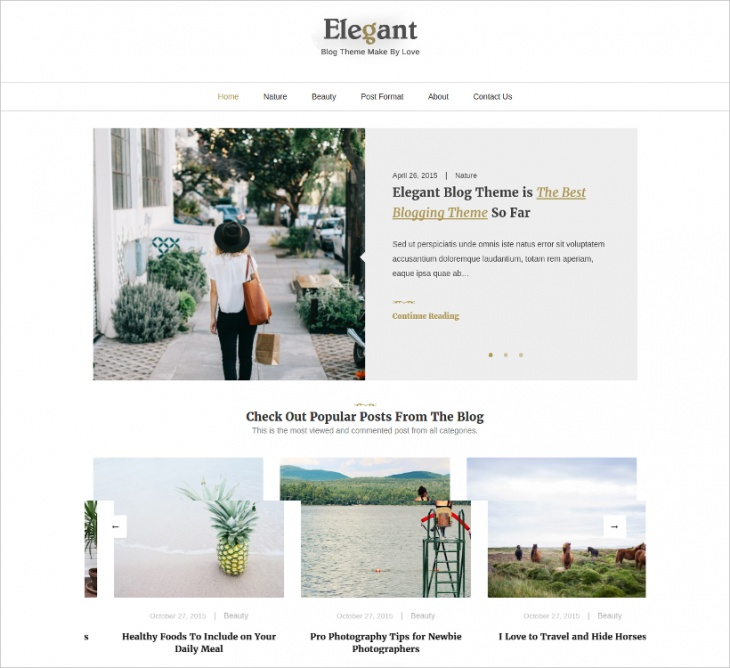 elegant blog theme