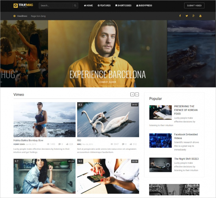 Video & Magazine WordPress Theme