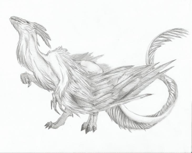realistic dragon drawings design trends premium psd vector