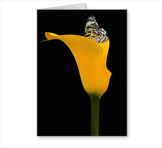 beautiful flower mock up for greetings