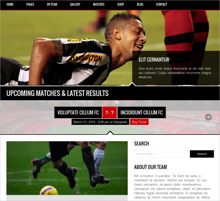 Responsive WordPress Theme for Sport Clubs