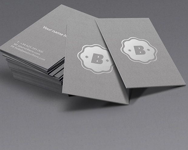 Set of Silver Color Business Mockup