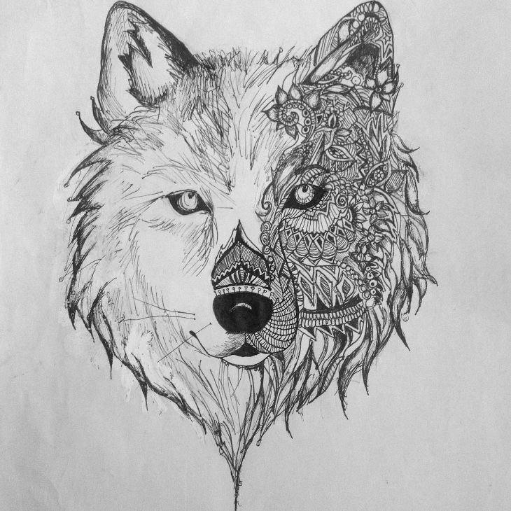 Aztec wolf drawing