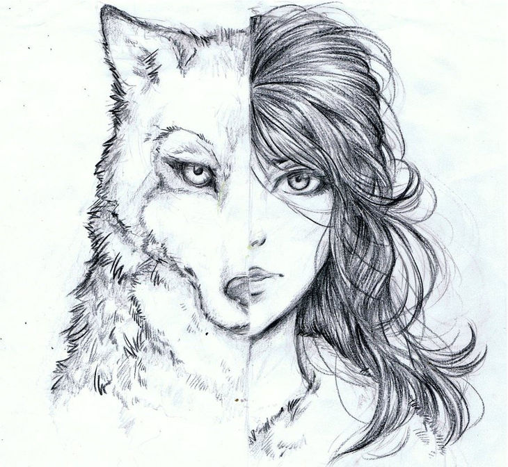 Half Girl and Half Wolf Drawing