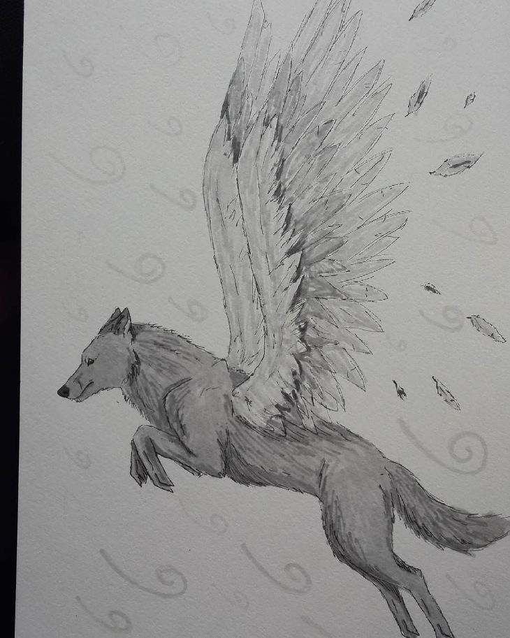Wings of Wolf Drawing
