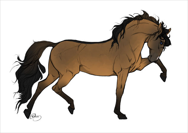 Running Brown Horse Drawing