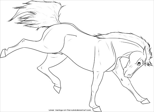 Lineart Horse Drawing
