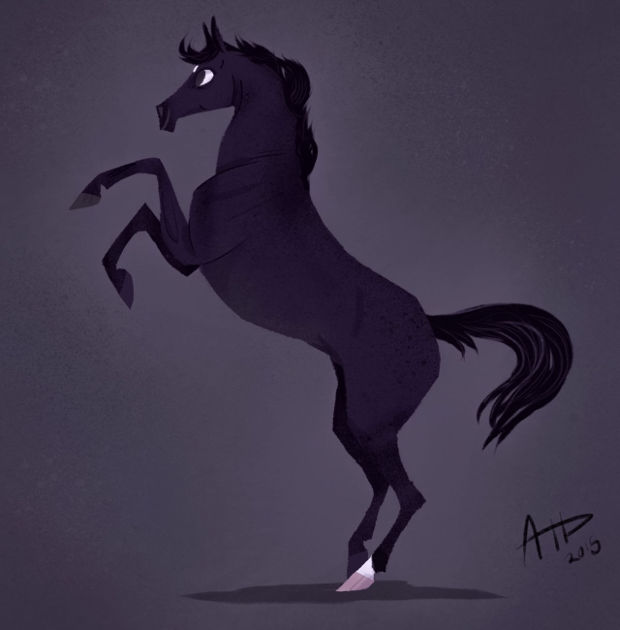 young black horse drawing