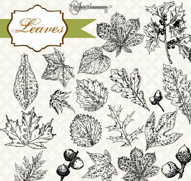 Vintage Leaves Photoshop Brushes