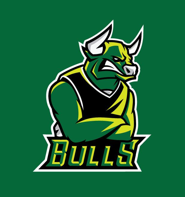Cool Set of Baseball Bull Logo