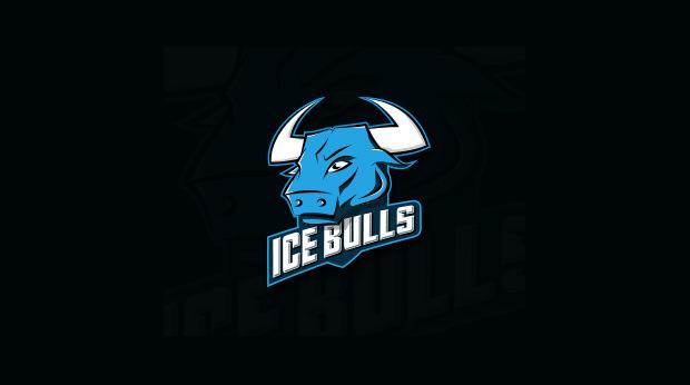 Sports team Bull Logo