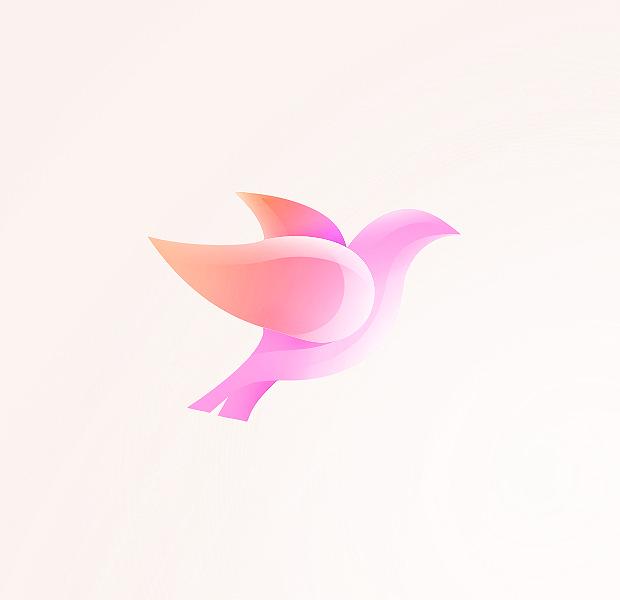 charming dove logo illustartion