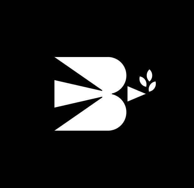 cool flying dove logo