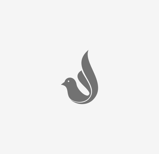 Cute Little Dove Logo Company Symbol