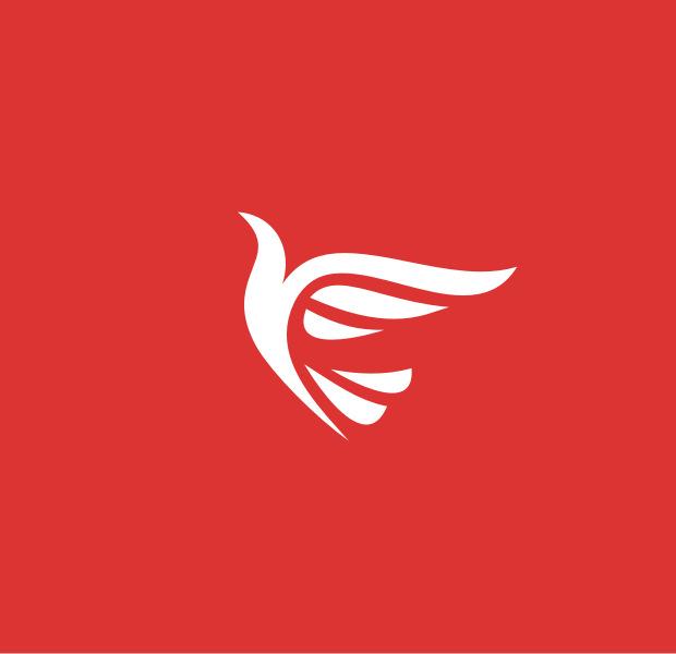 Flight Dove Logo illustration
