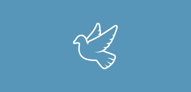 White Flying Dove Logo