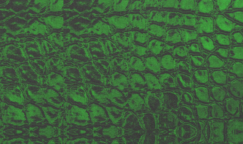 elegant green fabric texture