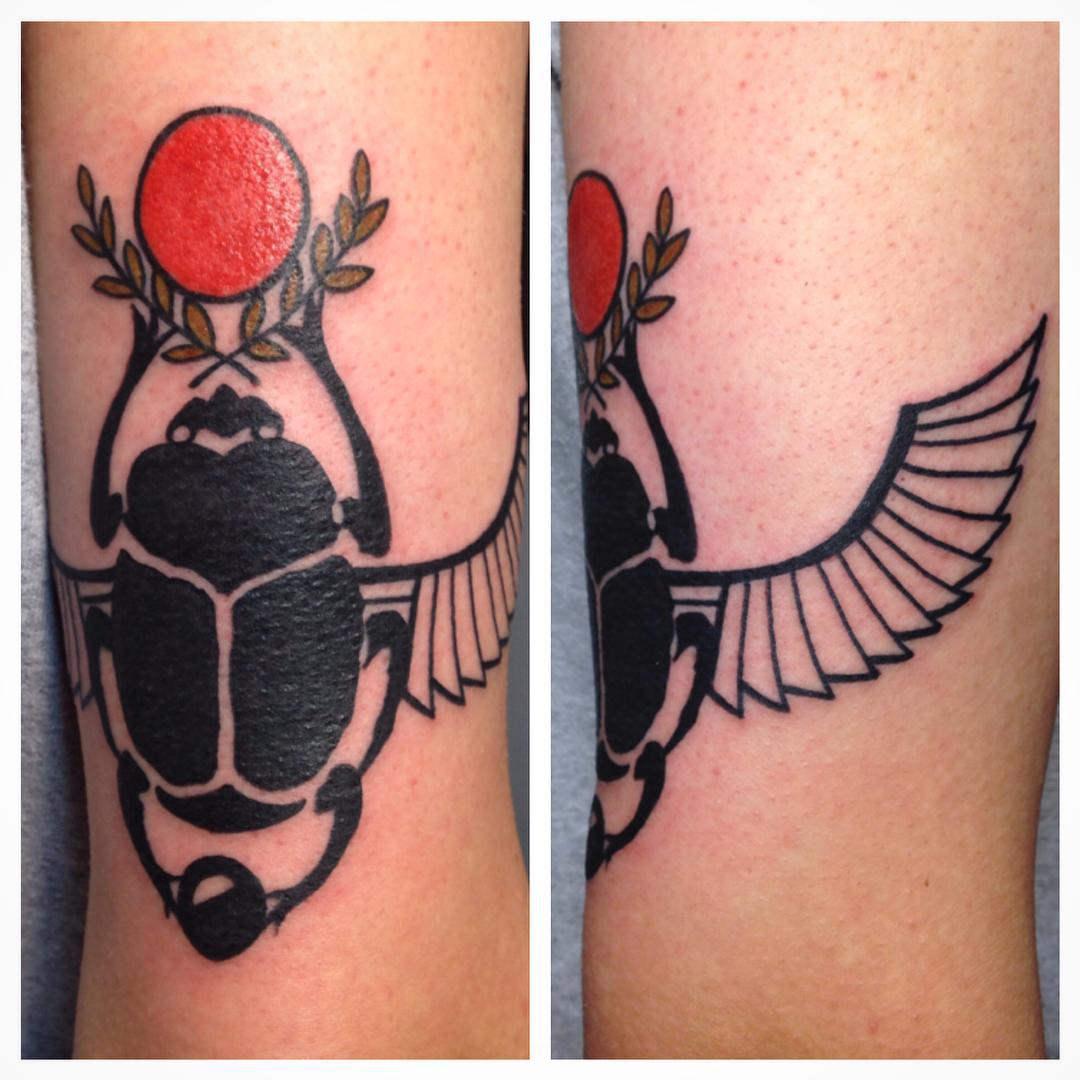 Beautiful Scarab Beetle