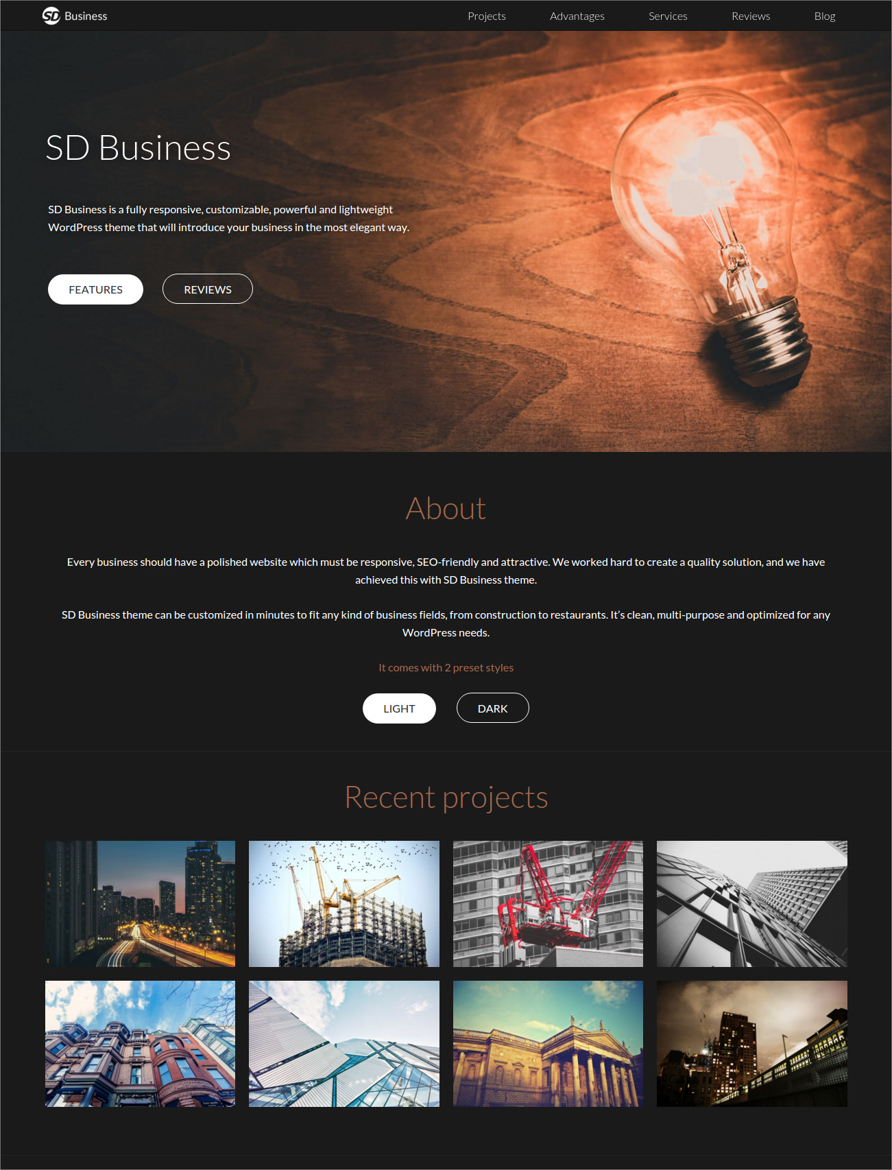 Dark WordPress Theme for Business