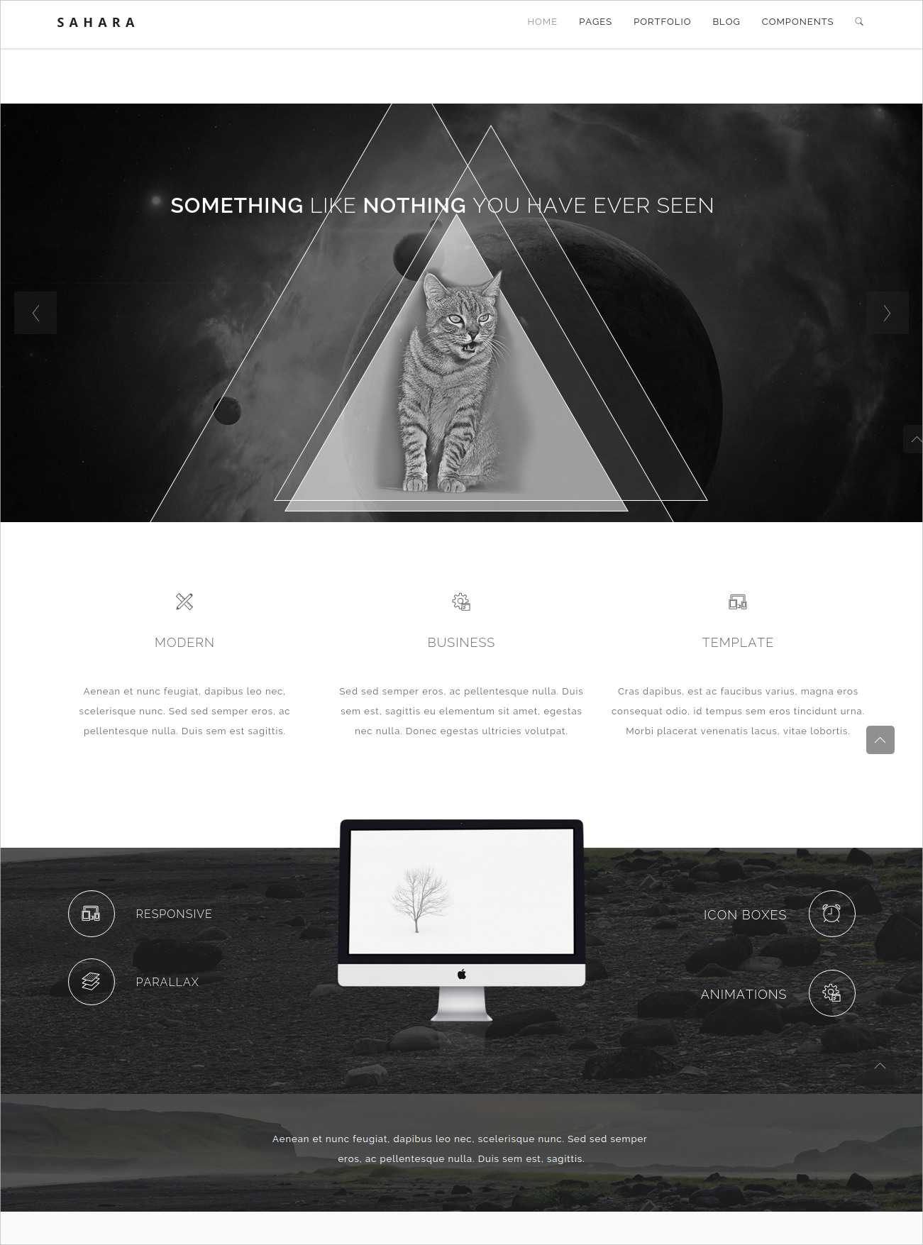 Multifaceted WP Theme for Business - $40
