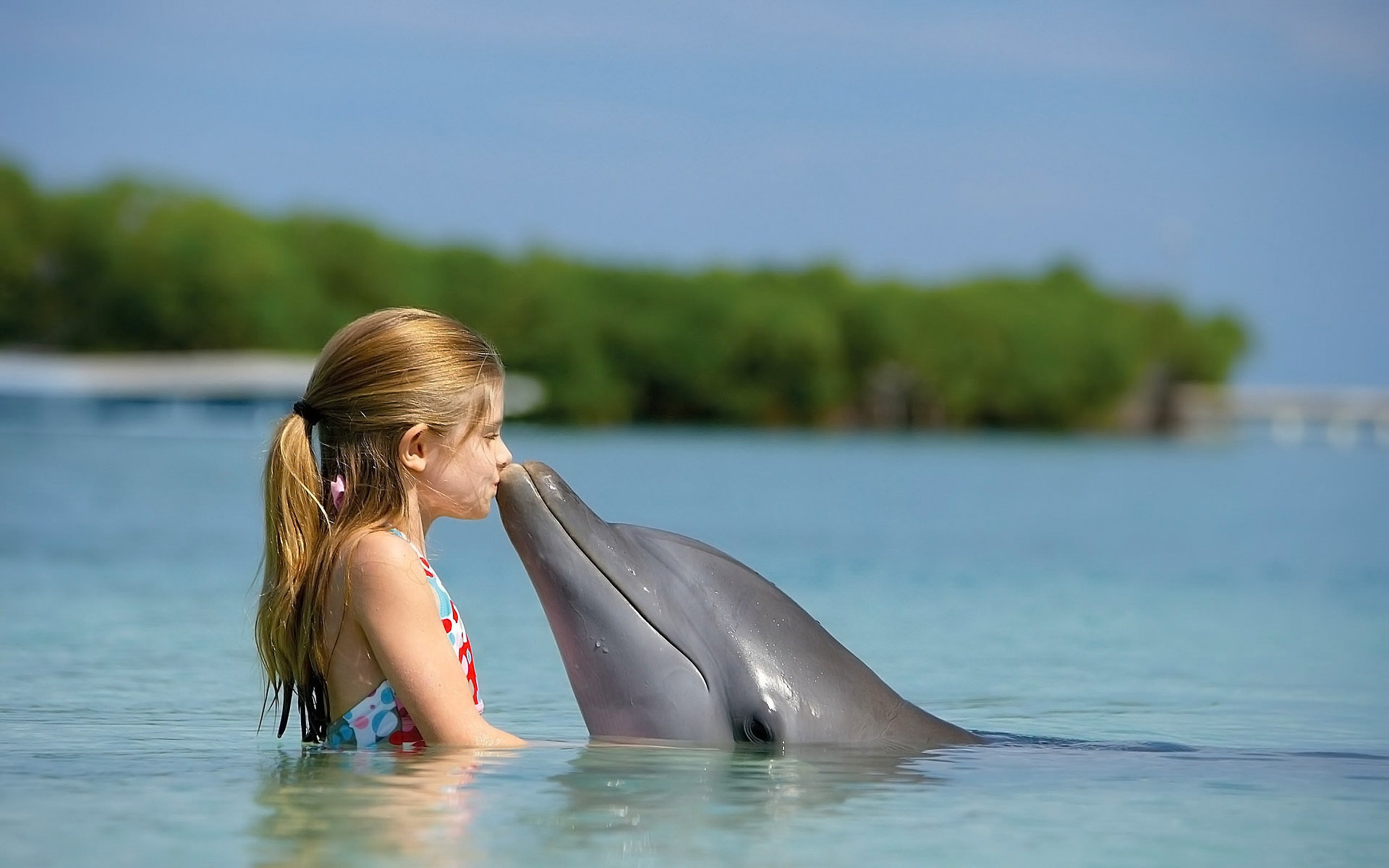 Dolphin Kissing a Little Girl Wallpaper