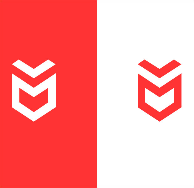 Simple Red and White isometric logo