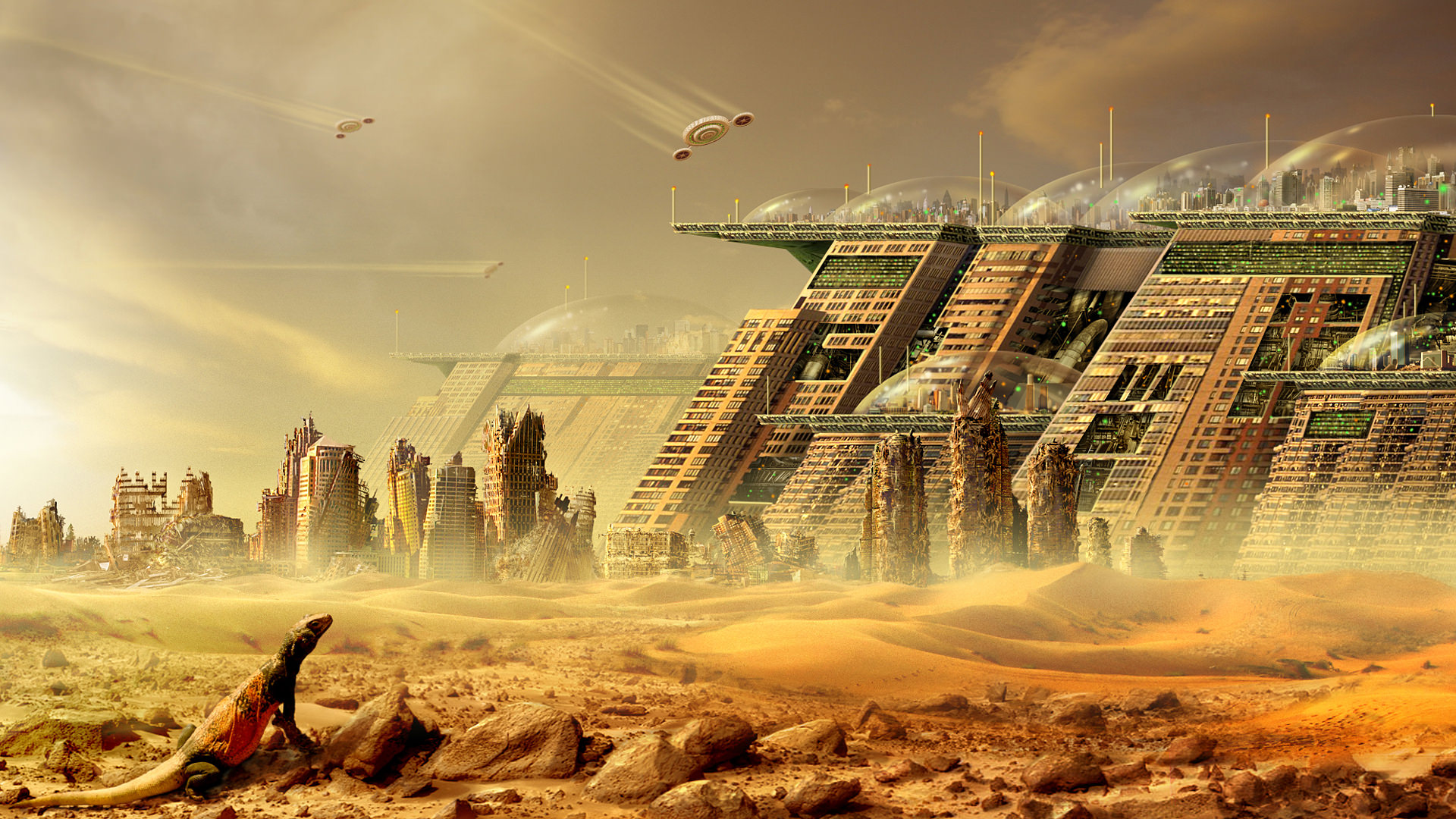 The New Desert City