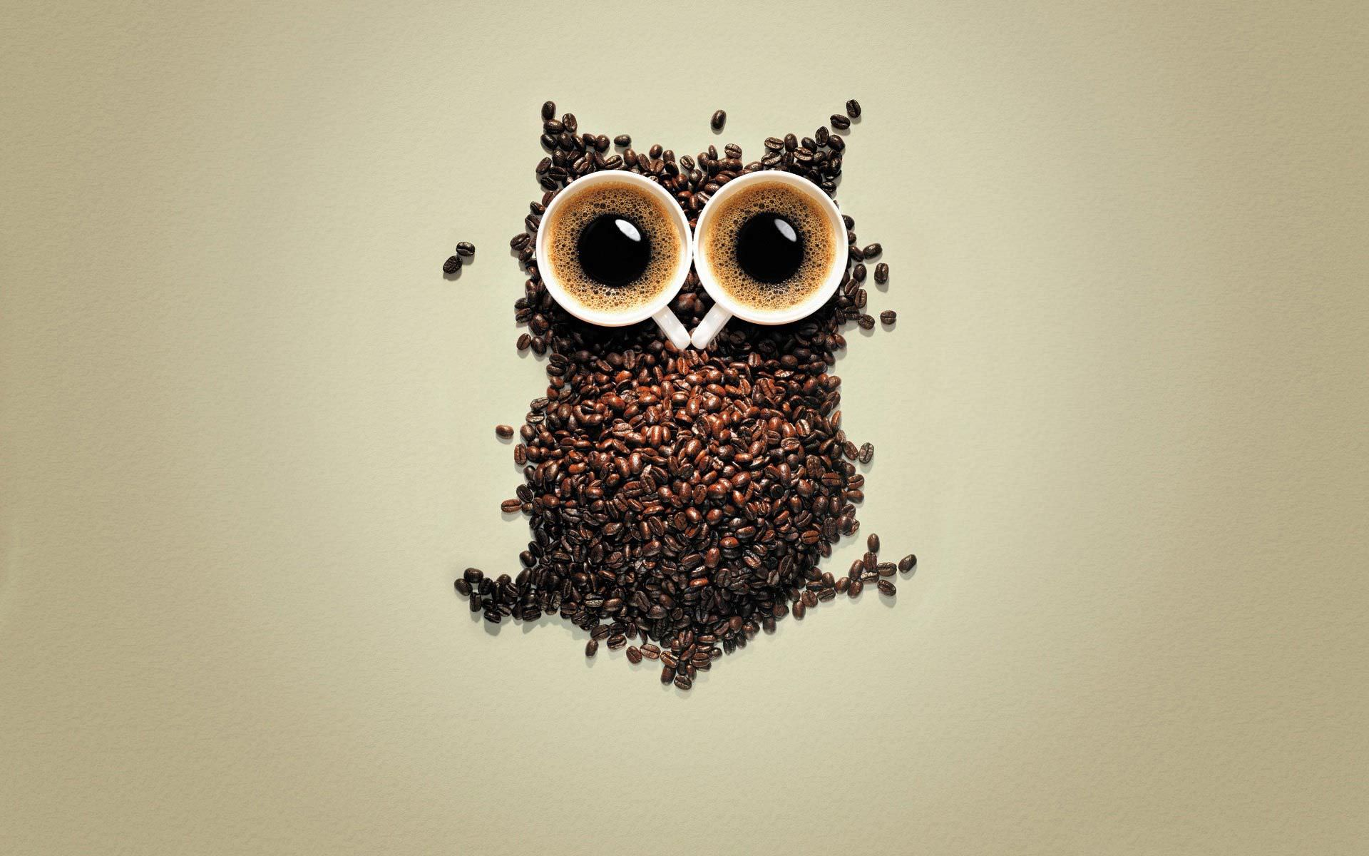 Funny Owl Coffee Beans Wallpaper