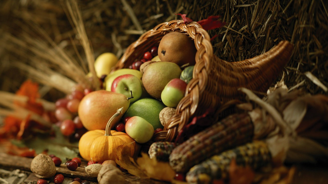 food autumn harvest wallpaper