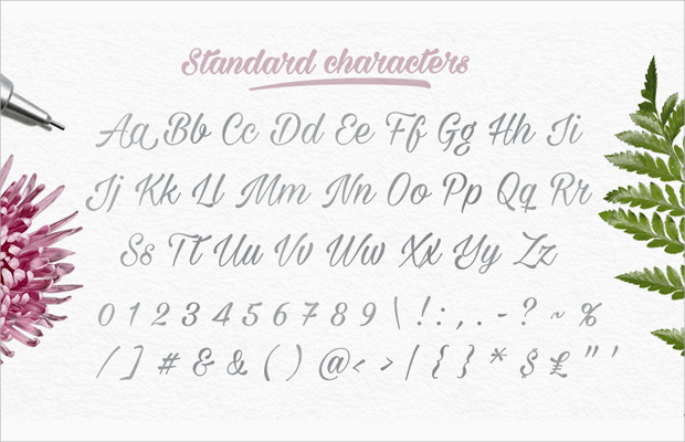 Standard Characters Set Of Thin Font