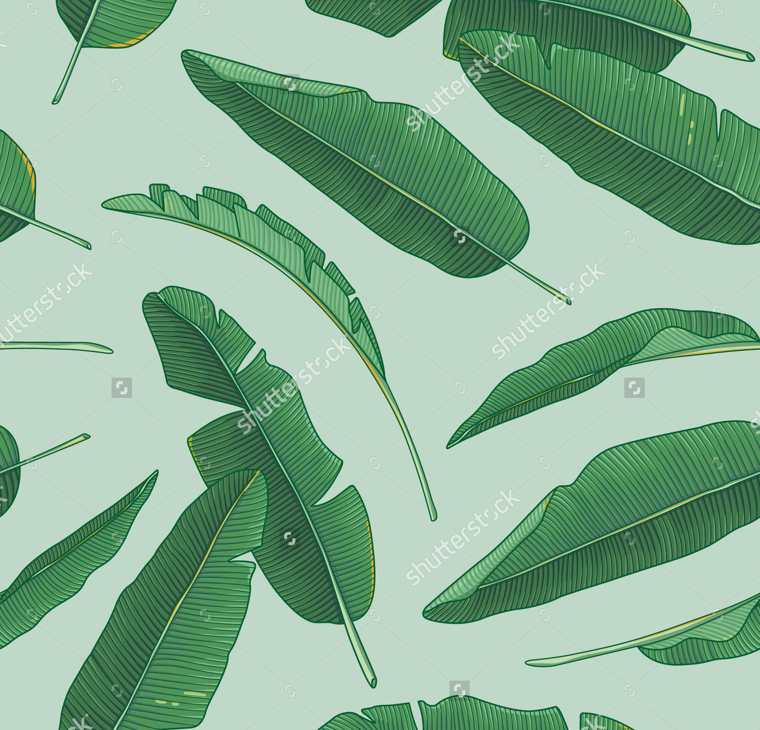 banana leaves pattern1