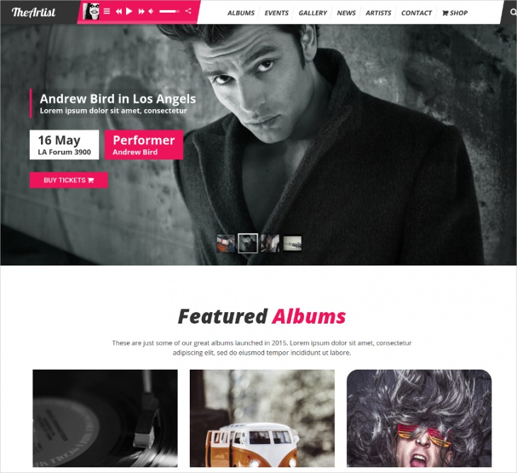 Artist Band Website Theme