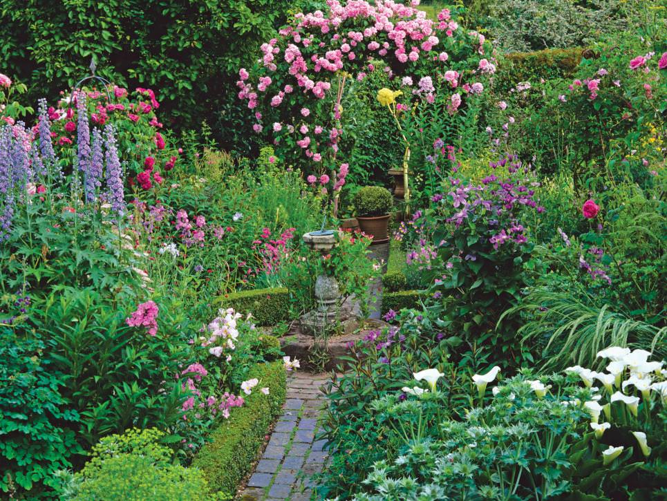Blooming Cottage Garden