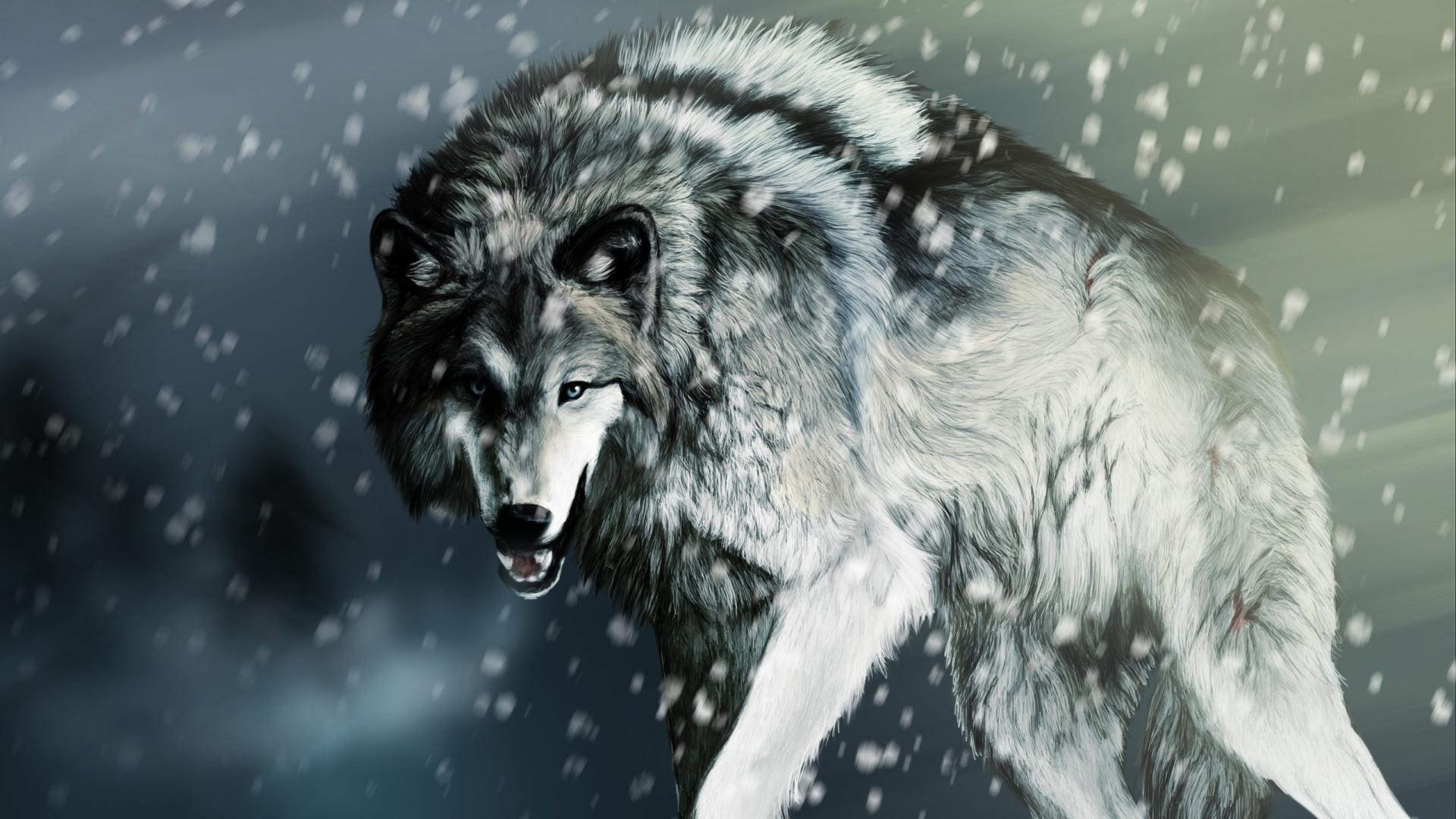 Angry Faced Wolf Wallpaper