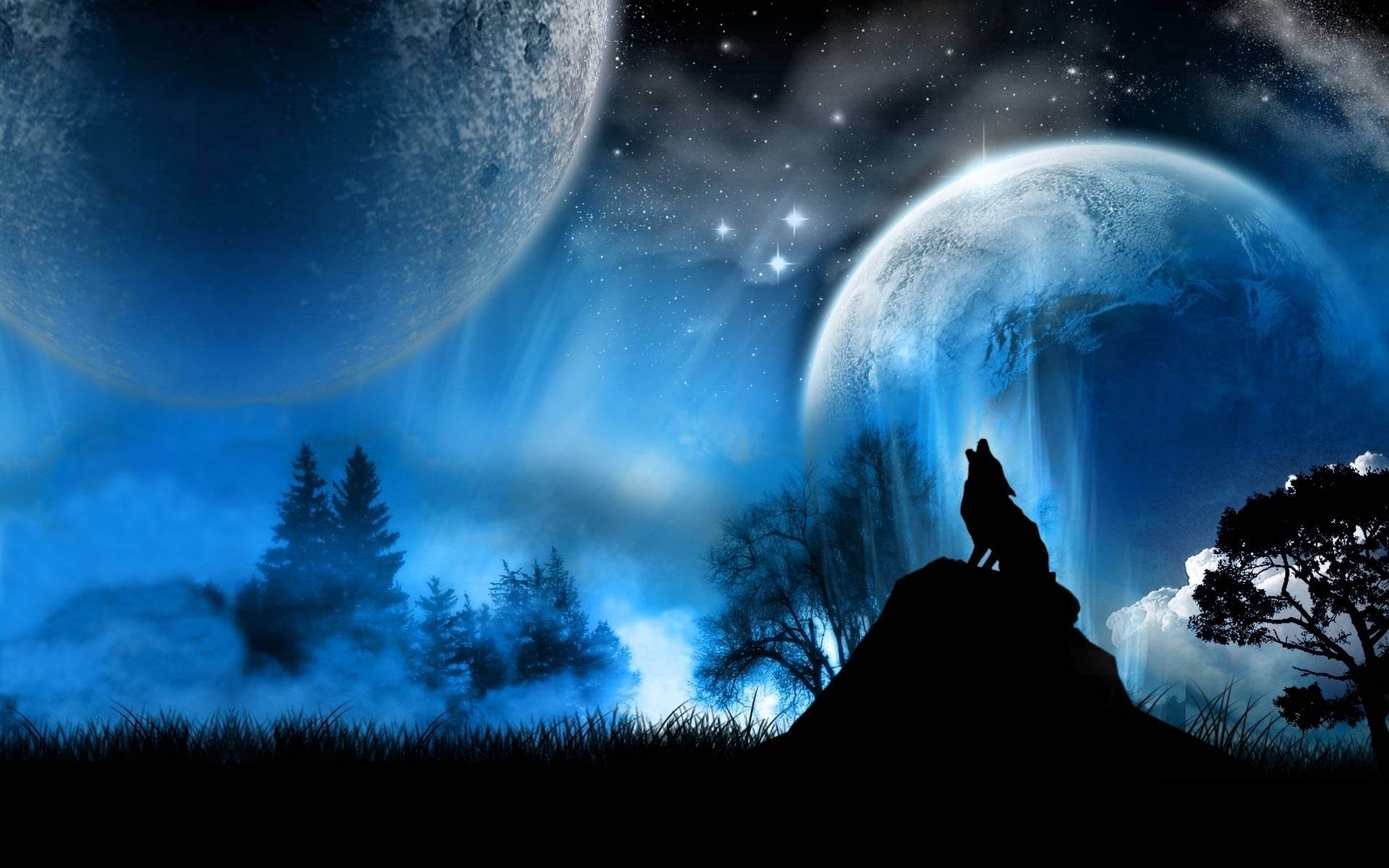Howling Wolf Dark Background