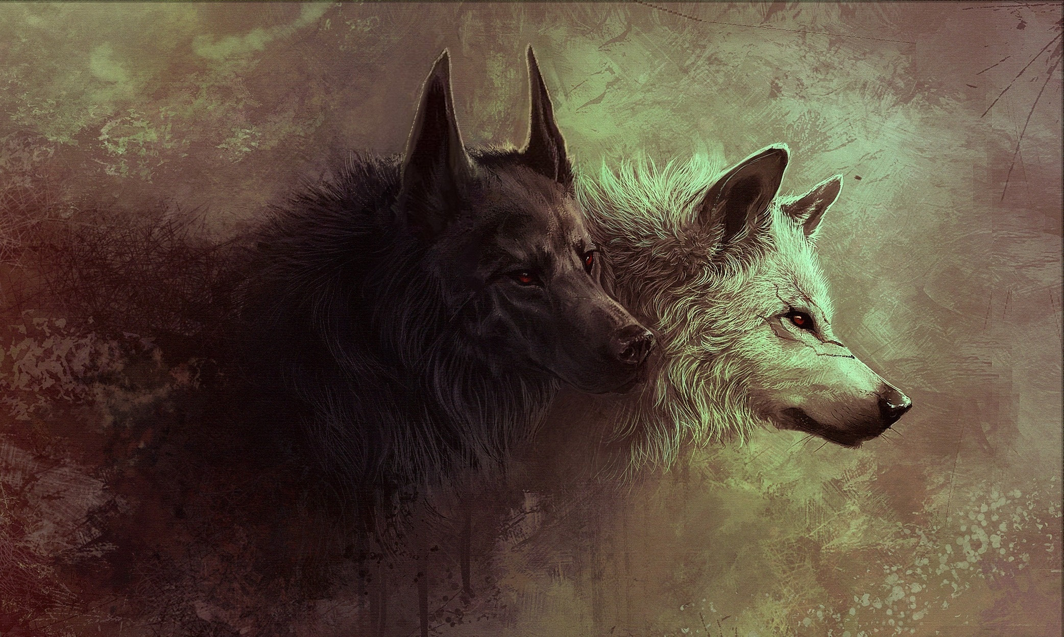 30 Wolf Backgrounds Wallpapers Images Pictures
