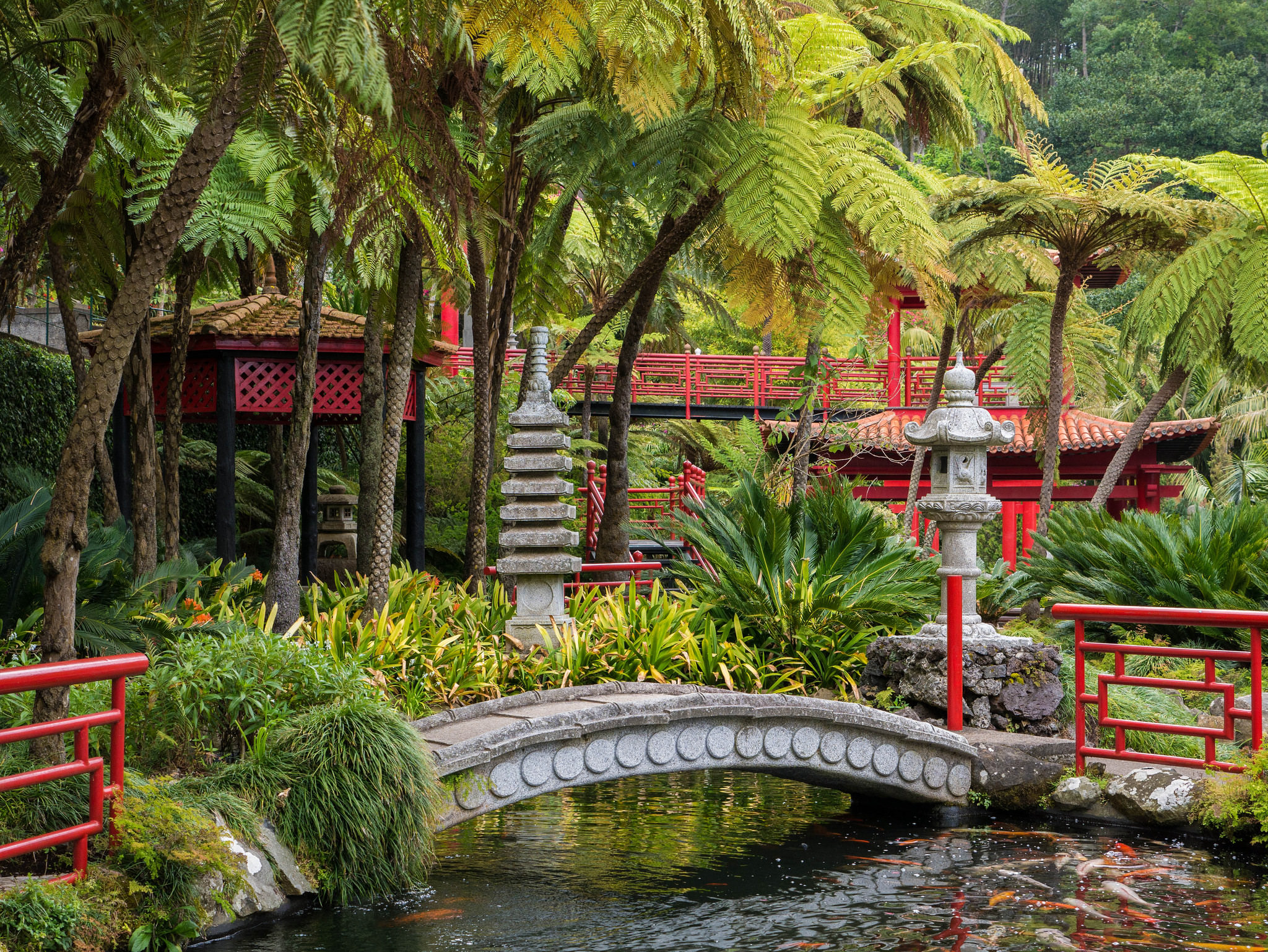 24+ Tropical Garden Designs, Decorating Ideas | Design ... on Tropical Backyard  id=54024