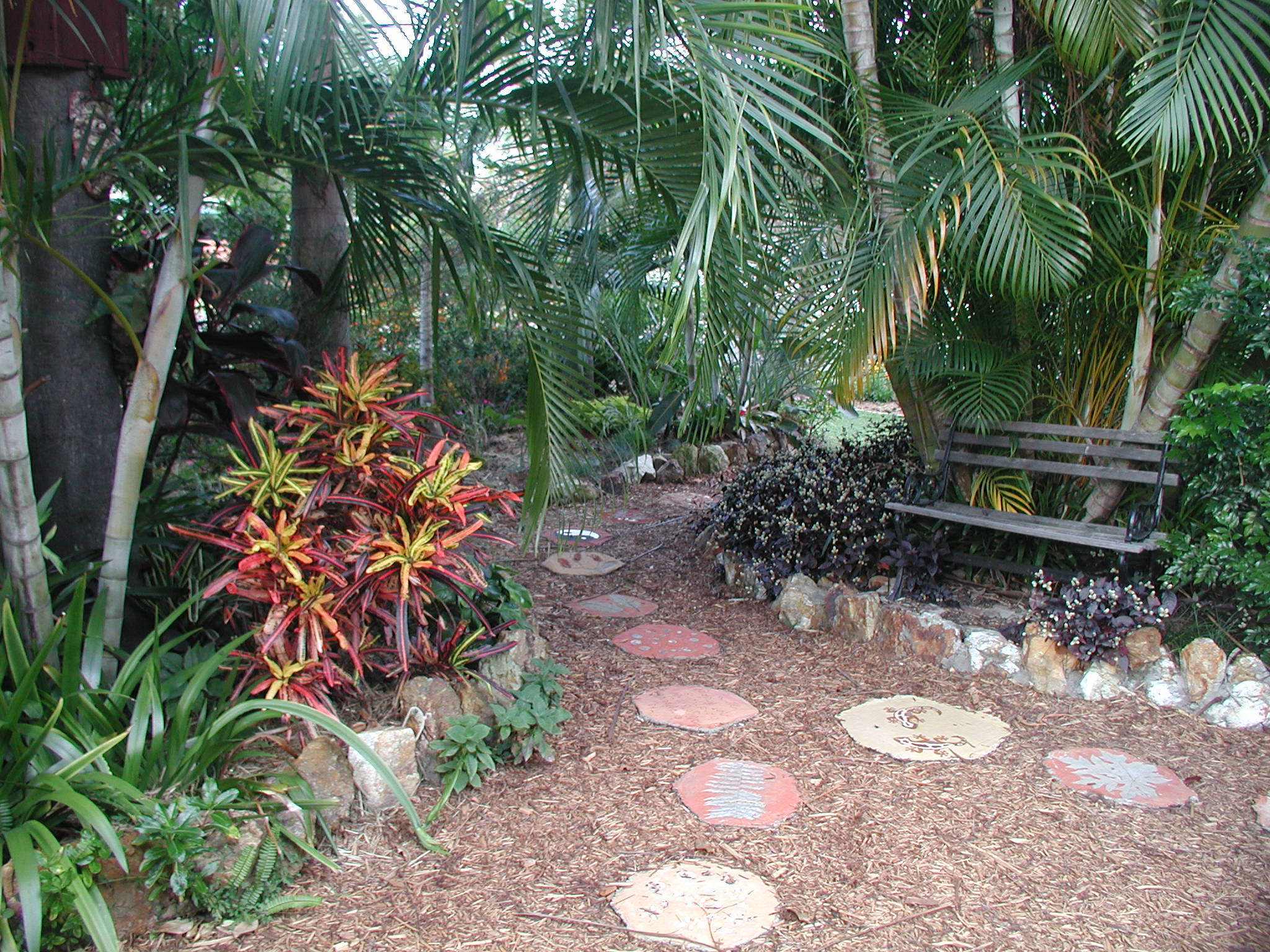 Outdoor Scenic Tropical Garden