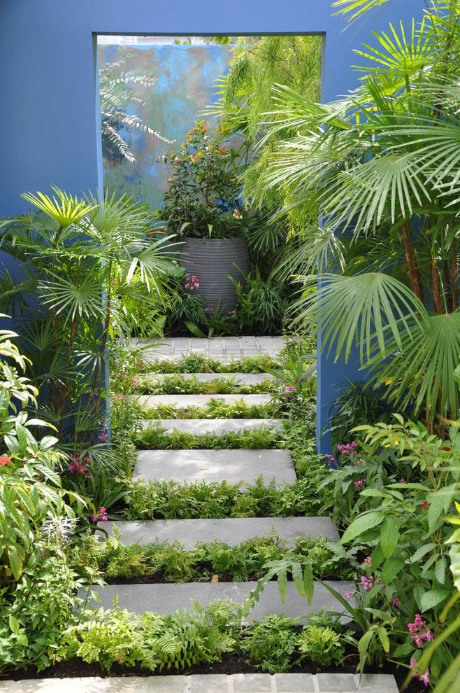Greenary Path way Tropical garden