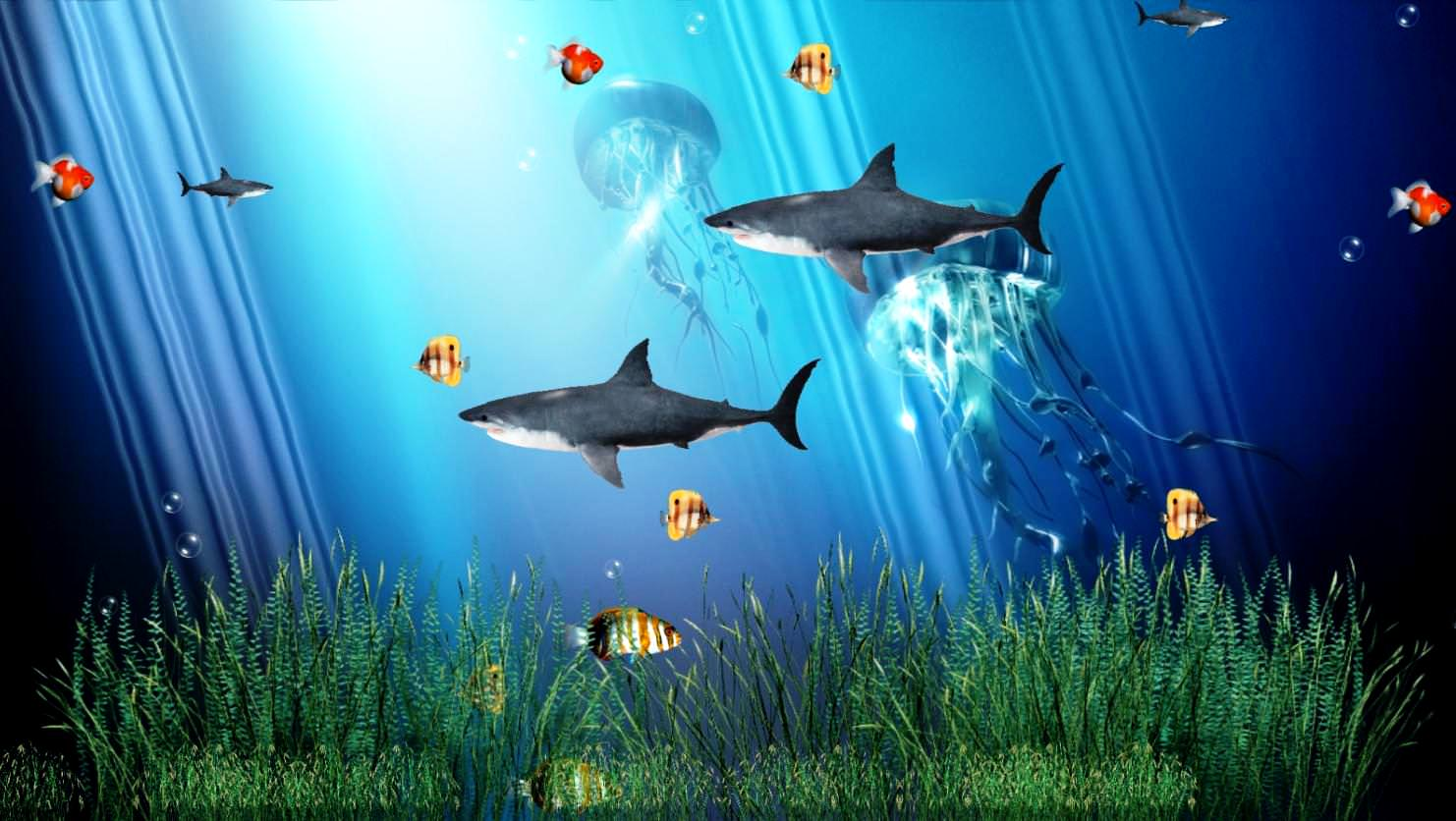 animated aquarium background