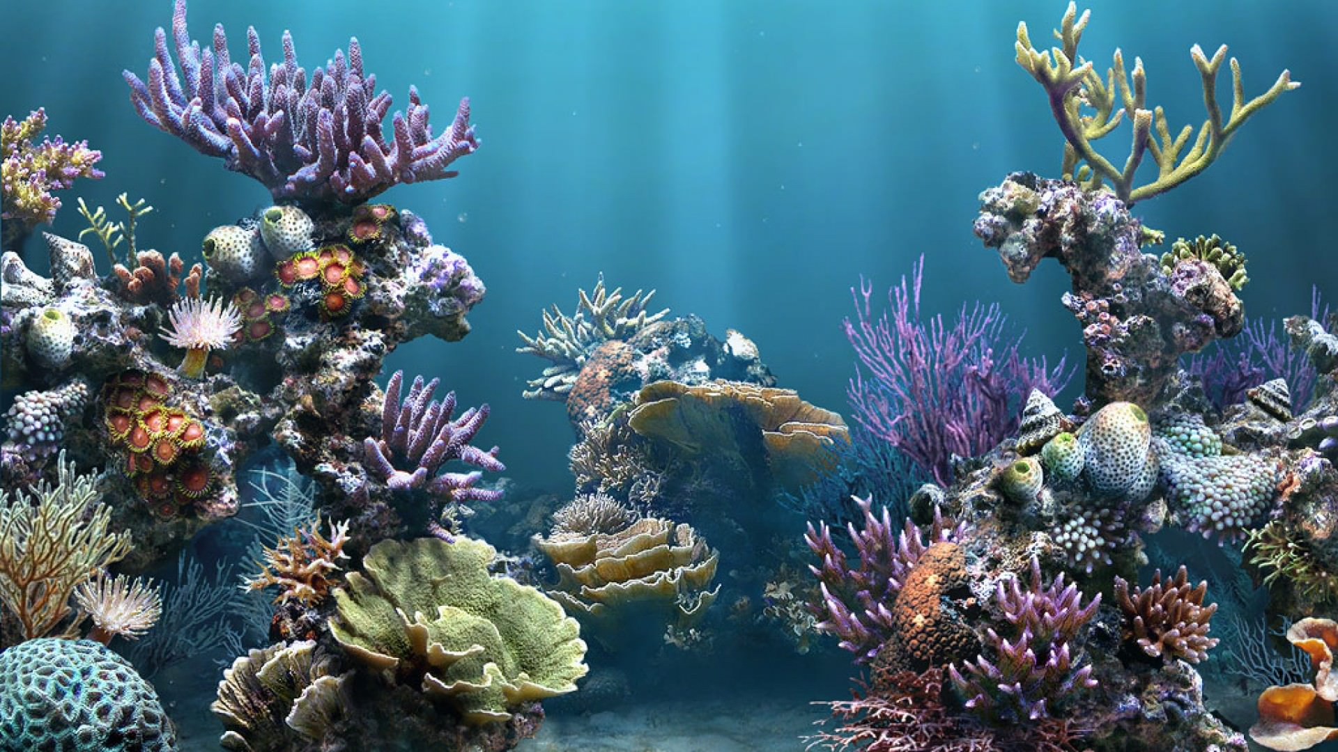 25 aquarium backgrounds wallpapers images pictures for Seamless fish tank