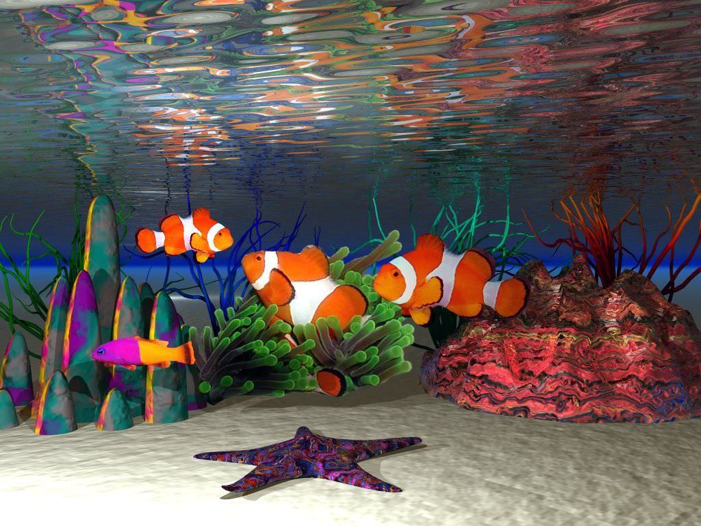 Animated Clown Fish Background