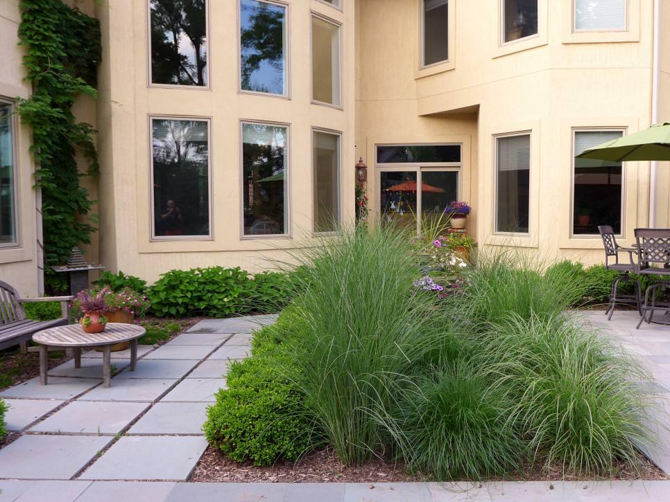 7outdoor contemporary backyard plantings