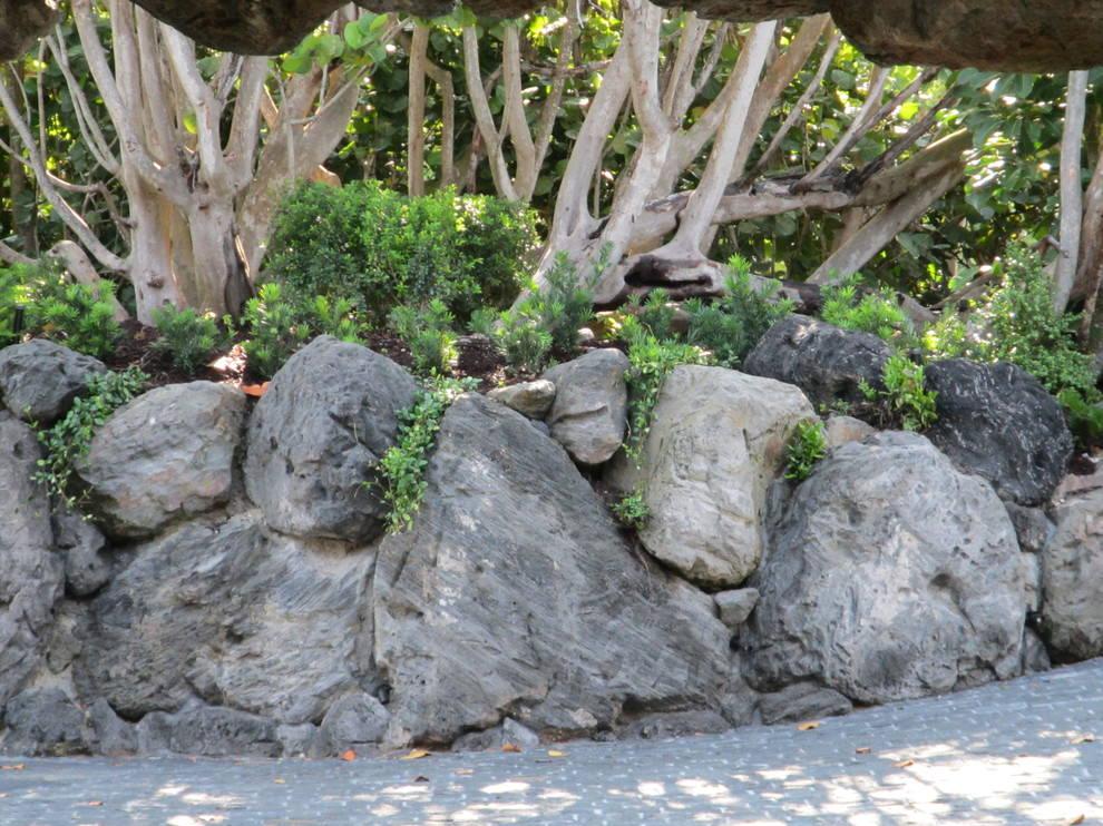 Amazing Rock Wall Garden